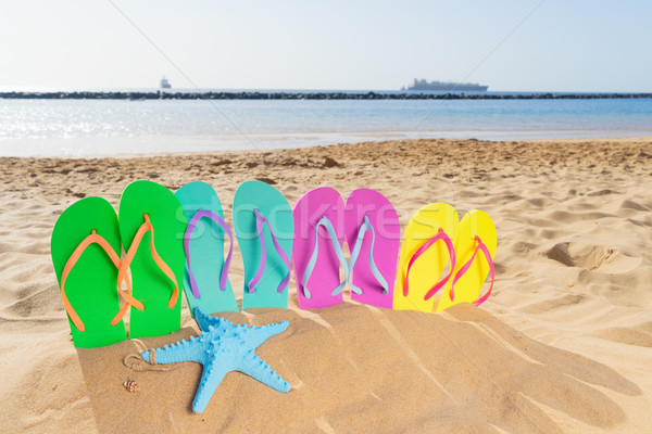 Summer beach fun Stock photo © neirfy