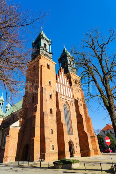 Gotik katedral kilise Polonya bazilika Stok fotoğraf © neirfy