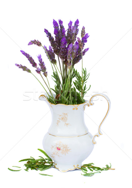 Bunch of lavender flowers iv vase Stock photo © neirfy