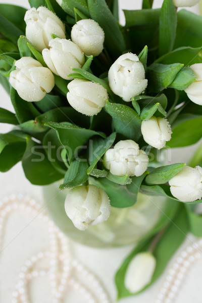 bouquet of white  tulips Stock photo © neirfy