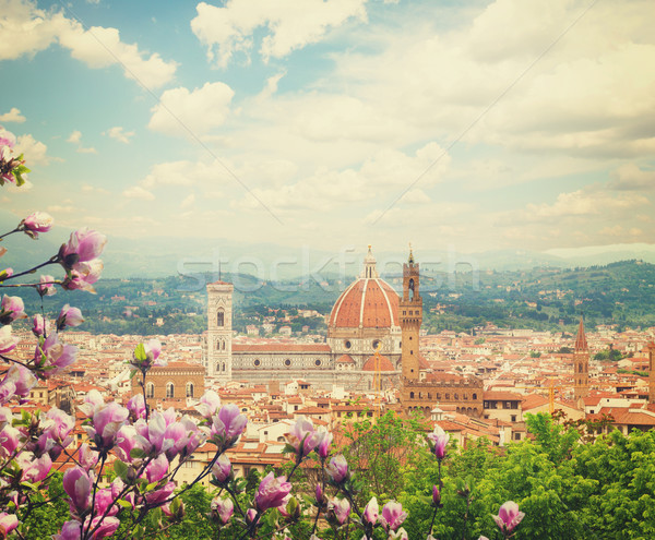 cathedral  Santa Maria del Fiore, Florence, Italy Stock photo © neirfy
