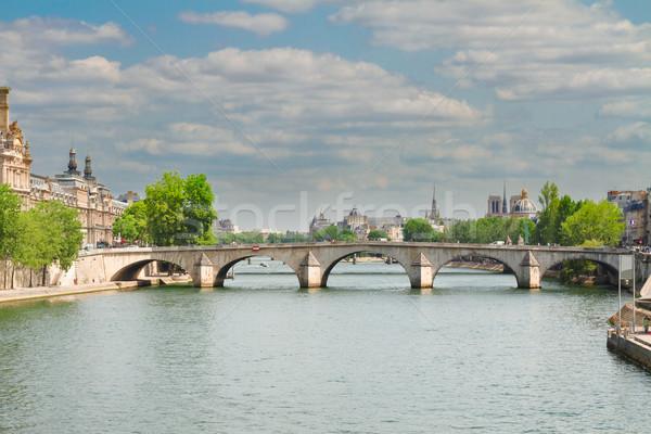 королевский Париж реке Франция дома здании Сток-фото © neirfy