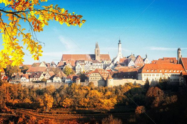 Almanya panoramik görmek düşmek dünya seyahat Stok fotoğraf © neirfy