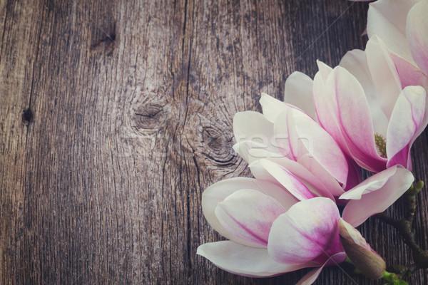 магнолия цветы жемчуга деревянный стол свежие весенние цветы Сток-фото © neirfy