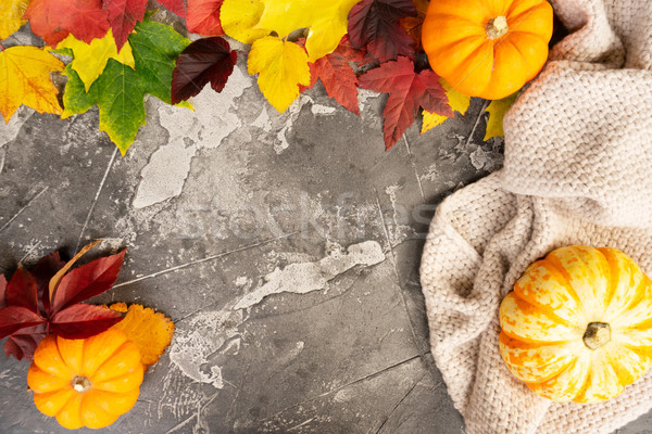 Thanksgiving pumpkins with fall leaves Stock photo © neirfy