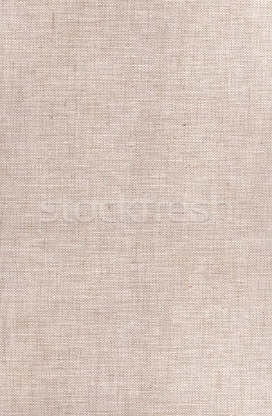 old book cloth background Stock photo © neirfy