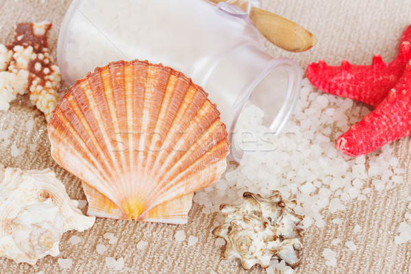 Sea spa setting with  scallops comb shell Stock photo © neirfy