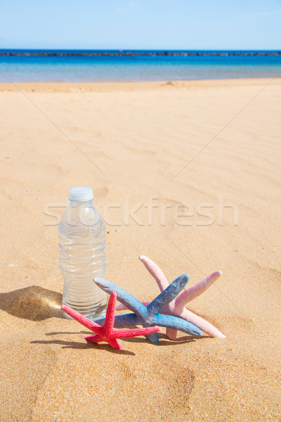 Fles water zandstrand cool zeester mode Stockfoto © neirfy