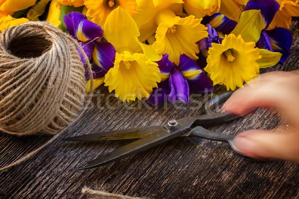 Pasen narcissen bewegende hand schaar Stockfoto © neirfy