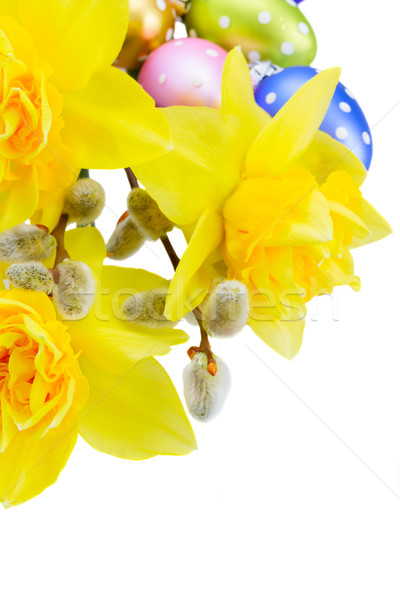 spring narcissus with eggs Stock photo © neirfy