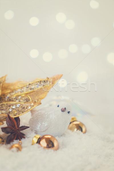 Beyaz Noel kar kuş altın çiçek Stok fotoğraf © neirfy