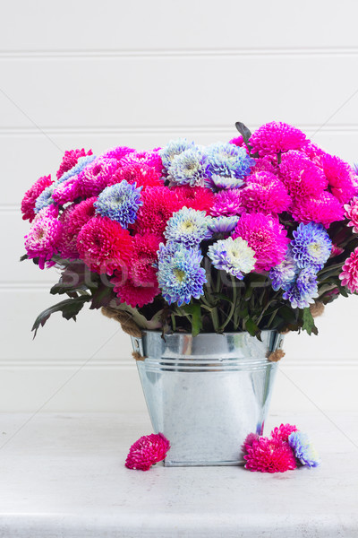 Spadek chryzantema kwiaty bukiet różowy niebieski Zdjęcia stock © neirfy