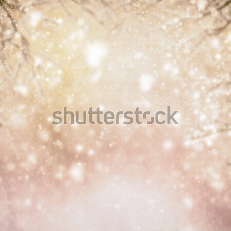 christmas background with fir tree and gleaming background Stock photo © neirfy