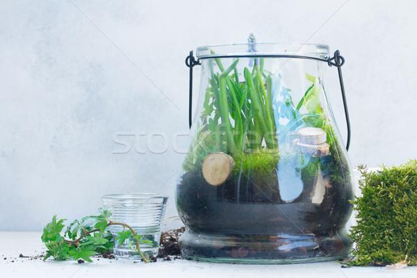 Tuin binnenkant metselaar jar tuinieren Stockfoto © neirfy