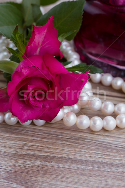 pink rose with pearls Stock photo © neirfy