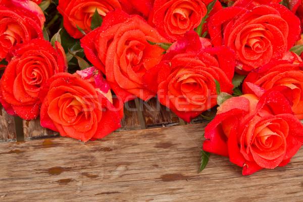 Brilhante laranja rosas mesa de madeira Foto stock © neirfy