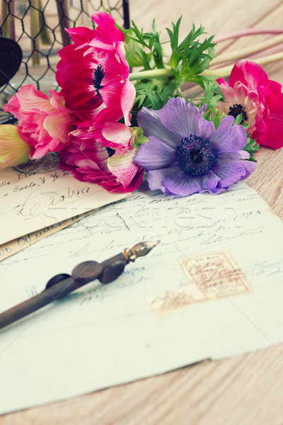 pink anemone flowers  with old retro  quill pen Stock photo © neirfy