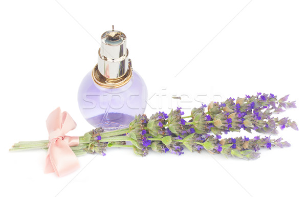 Lavender flowers spa Stock photo © neirfy
