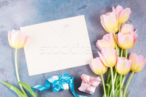 Pembe sarı lale sınır hediye kutuları gri Stok fotoğraf © neirfy