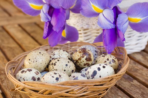 quail eggs and irises Stock photo © neirfy