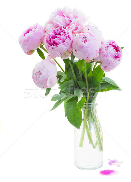 bouquet of pink peonies Stock photo © neirfy
