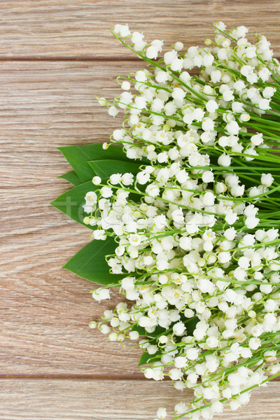 lilly of the valley posy Stock photo © neirfy