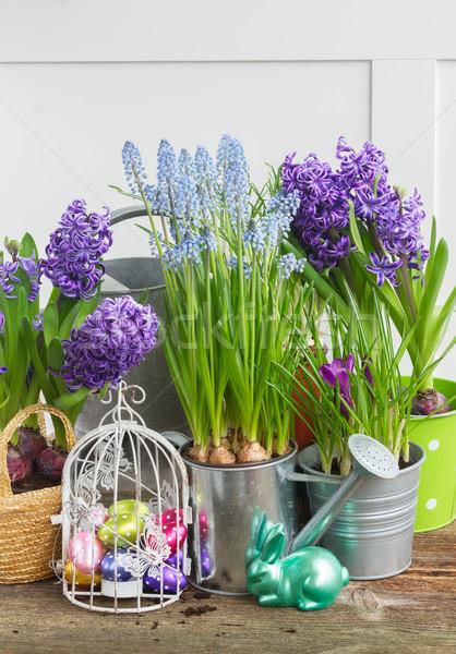 Stock fotó: Húsvét · kert · tojások · madárkalitka · nyúl · virág