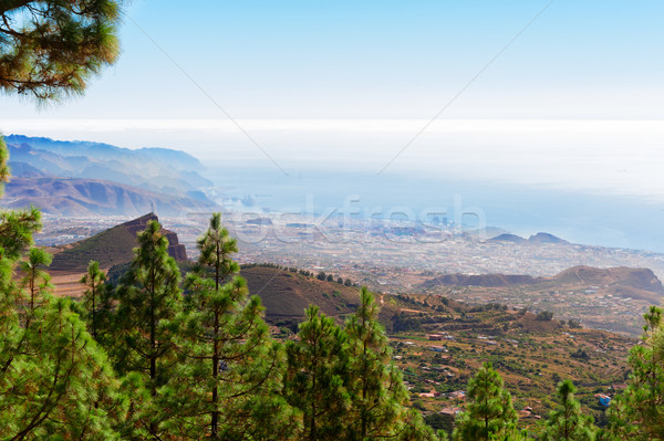 Tenerife ada İspanya su Stok fotoğraf © neirfy