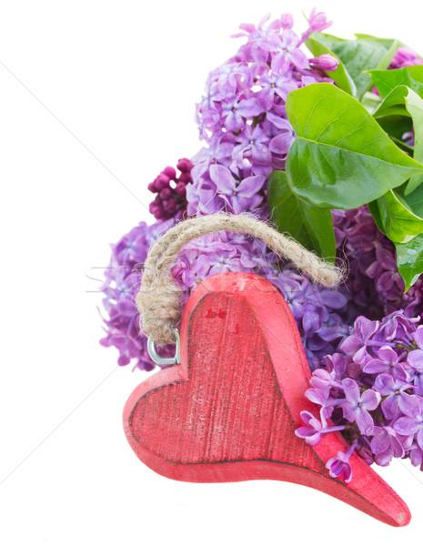 сирень цветы сердце изолированный белый Пасху Сток-фото © neirfy
