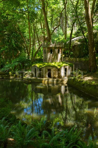 Tuinen Portugal zomer water bos Stockfoto © neirfy