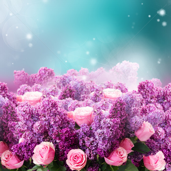 Lilac flowers on blue Stock photo © neirfy
