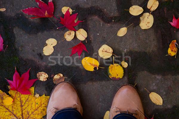 Foto stock: Piernas · caída · carretera · colorido · hojas