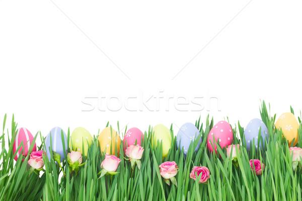 Stockfoto: Paaseieren · gras · bloemen · geïsoleerd · witte · Pasen