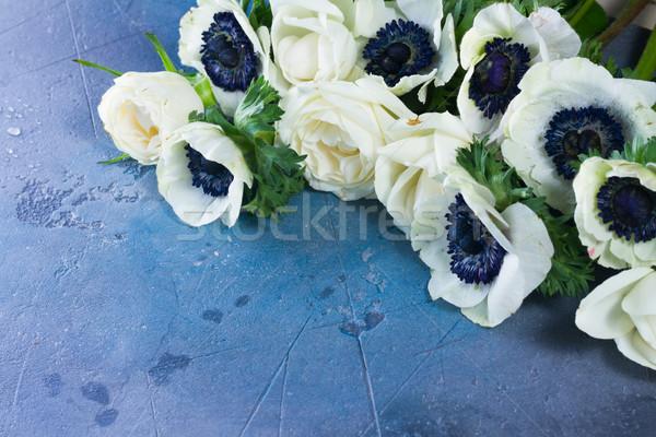 Flores pedra fresco branco cinza azul Foto stock © neirfy