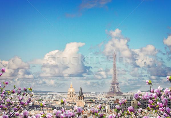 Ufuk çizgisi Paris Eyfel Kulesi şehir çatılar üzerinde Stok fotoğraf © neirfy