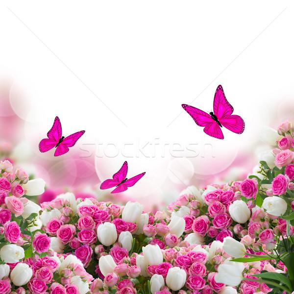 Foto stock: Rosas · tulipanes · flores · mariposas · jardín