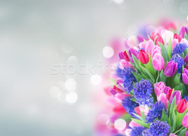 букет синий гиацинт тюльпаны копия пространства Сток-фото © neirfy