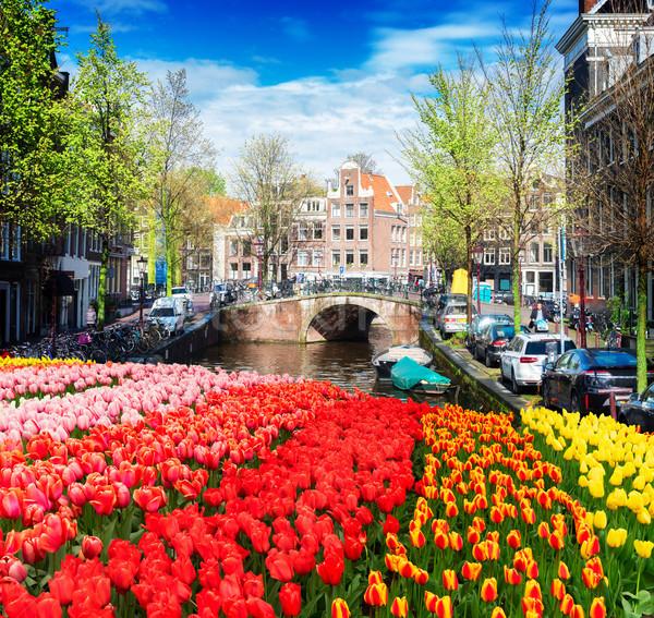 домах Нидерланды голландский исторический моста канал Сток-фото © neirfy