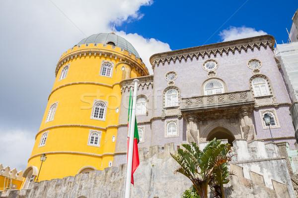 Portugal brilhante amarelo torre edifício floresta Foto stock © neirfy