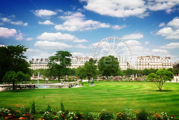 саду Париж газона лет день Франция Сток-фото © neirfy