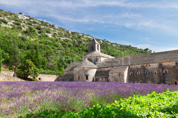 Abbey Senanque and Lavender field, France Stock photo © neirfy
