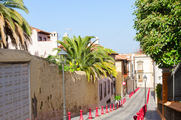 colorful street in old town, Orotava, Tenerife island Stock photo © neirfy