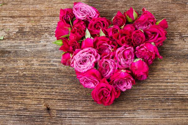 Leylak rengi güller küçük taze kalp şekli Stok fotoğraf © neirfy