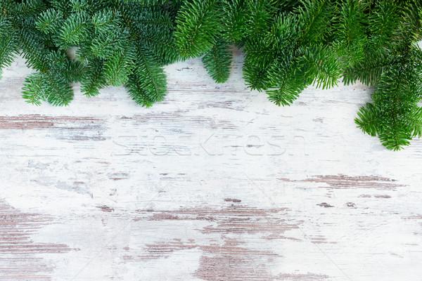 Noel taze yaprak dökmeyen ağaç sınır Stok fotoğraf © neirfy