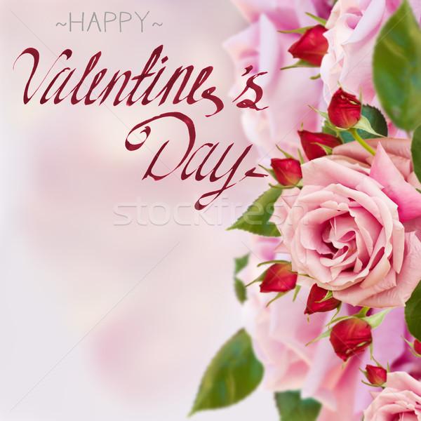 Rosa jardim rosas feliz dia dos namorados Foto stock © neirfy