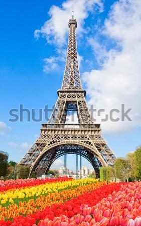 Eyfel Kulesi Fransa çiçekler Stok fotoğraf © neirfy
