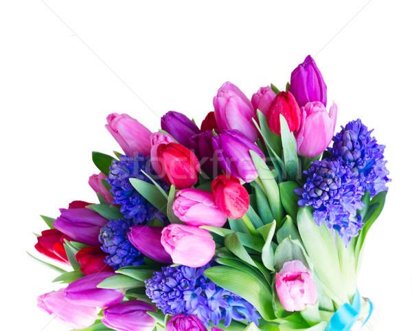 Sümbül lale çiçekler buket yalıtılmış beyaz Stok fotoğraf © neirfy