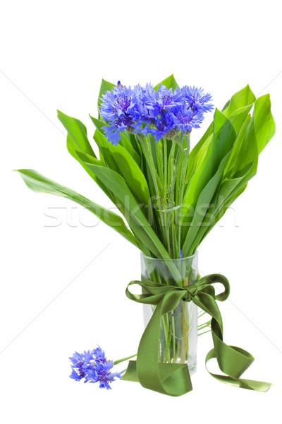 navy corn flowers bouquet in vase Stock photo © neirfy