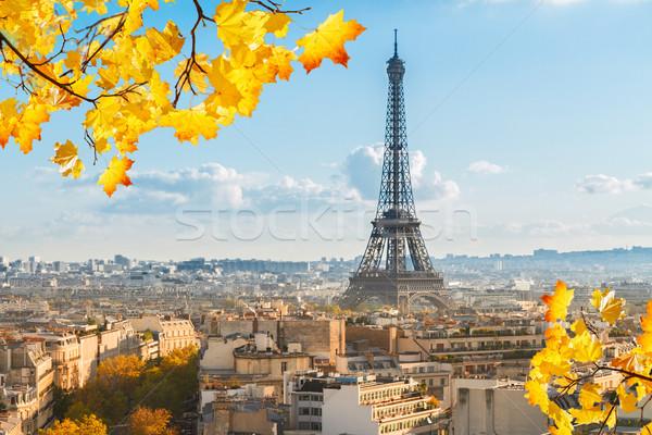 Eiffel gira París paisaje urbano soleado otono Foto stock © neirfy