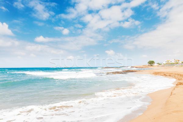 Malia beach, Crete, Greece Stock photo © neirfy